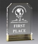 Diamond Carved Award Acrylic Awards