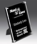 Valued Stand Out Plaques Acrylic Awards