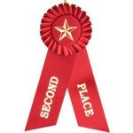 2nd Place Rosette Ribbon Baseball Trophy Awards