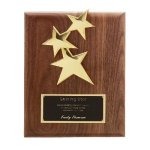 Star Plaque Corporate Plaques