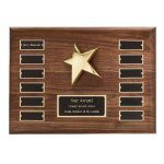 Perpetual Star Plaque Golf Awards