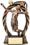 Bronze and Gold Volleyball , Female Award Volleyball