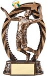 Bronze and Gold Volleyball, Male Award Volleyball