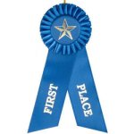 1st Place Rosette Ribbon Volleyball Trophy Awards